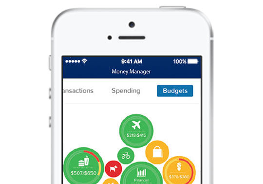 Money Management screen on iPhone