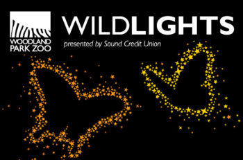 Wildlights logo with butterfly graphics